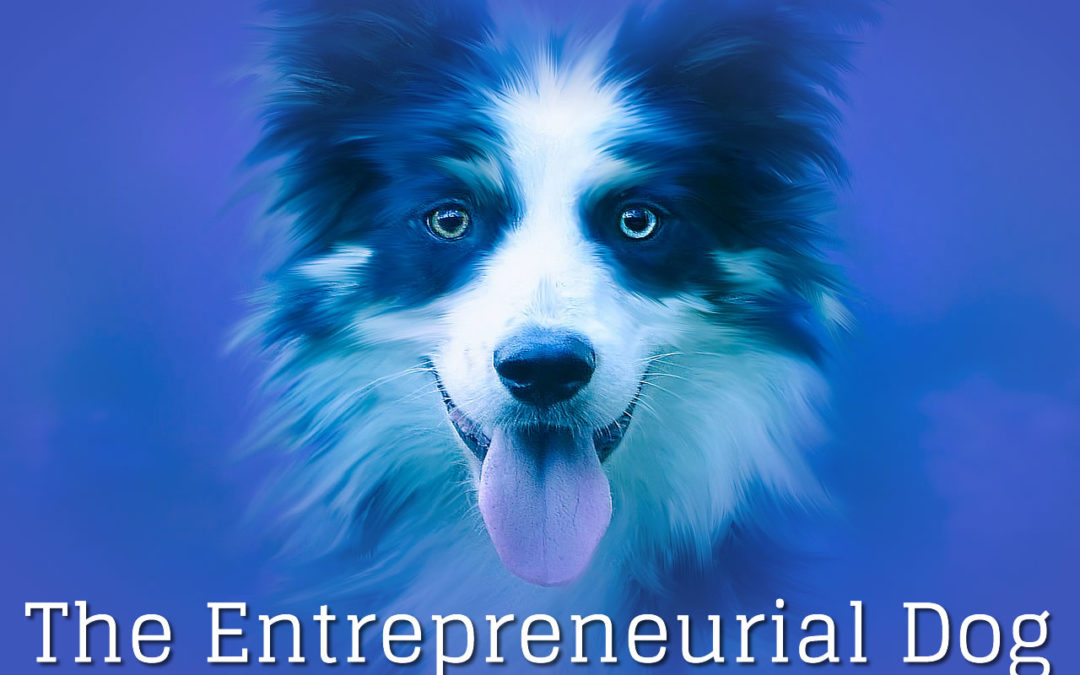 The Entrepreneurial Dog – Part VII