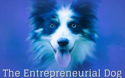 The Entrepreneurial Dog – Part VII